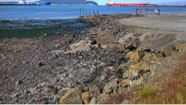 Science and Monitoring of Fidalgo Bay